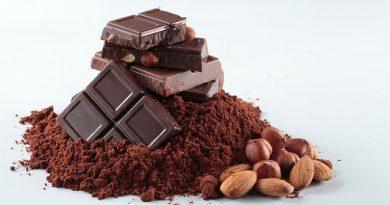 Свойства шоколада и какао