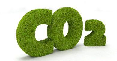 Теплопроводность, плотность и свойства углекислого газа